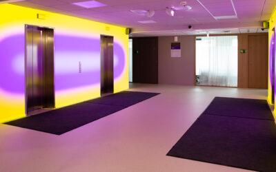 Pekka Sassin videoinstallaatio Kolmas väri on julkistettu Opetushallituksen toimitiloissa